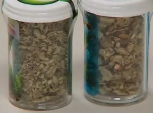 Las diferencias entre cannabinoides naturales y cannabinoides sinteticos